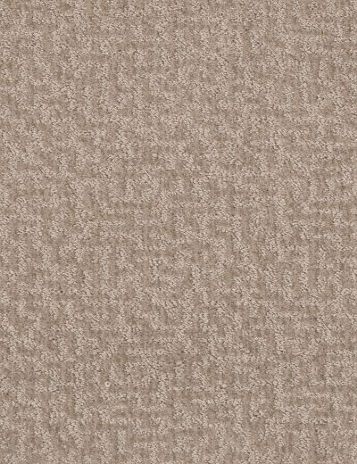 Shaw Floors Bellera Emergence Net Toast 00105_5E017