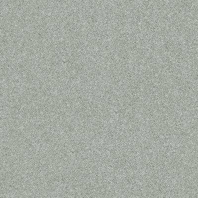 Shaw Floors SFA Fyc Ns I Net Water's Edge (s) 430S_5E018