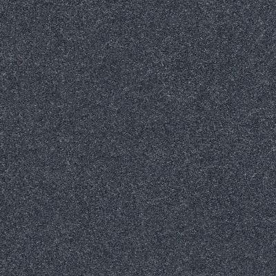 Shaw Floors SFA Fyc Ns I Net Washed Indigo (s) 440S_5E018
