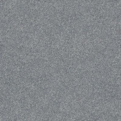 Shaw Floors SFA Fyc Ns I Net Dolphin Sighting (s) 510S_5E018