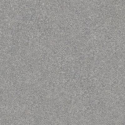 Shaw Floors SFA Fyc Ns I Net Misty Rain (s) 529S_5E018