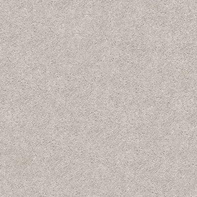 Shaw Floors SFA Fyc Ns I Net Dreamy (s) 537S_5E018