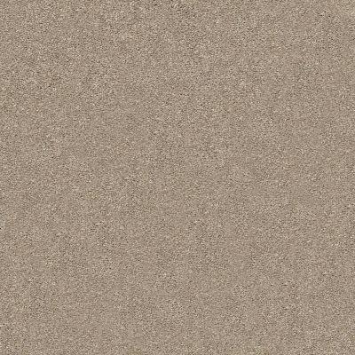 Shaw Floors SFA Fyc Ns I Net Dockside View (s) 722S_5E018