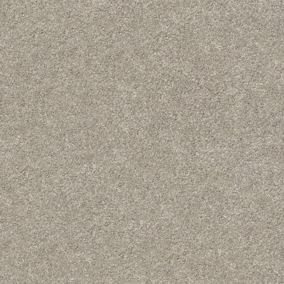 Shaw Floors SFA Fyc Ns I Net Back Patio (s) 724S_5E018