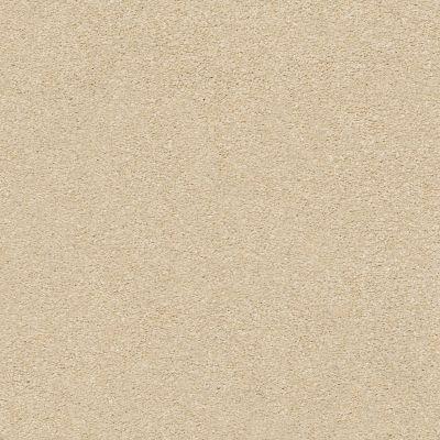Shaw Floors SFA Fyc Ns II Net Sun Kissed (s) 110S_5E019