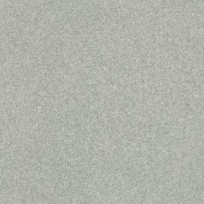 Shaw Floors SFA Fyc Ns II Net Distant Valley (s) 307S_5E019
