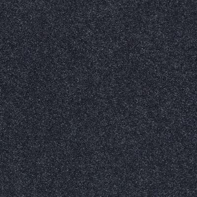 Shaw Floors SFA Fyc Ns II Net Star Gazing (s) 433S_5E019