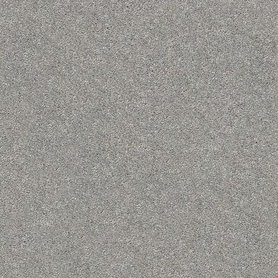 Shaw Floors SFA Fyc Ns II Net Cool Breeze (s) 525S_5E019