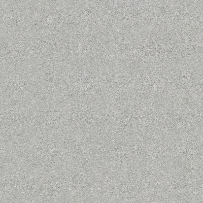 Shaw Floors Value Collections Fyc Ns II Net Polished Silver (s) 538S_5E019
