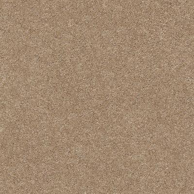 Shaw Floors SFA Fyc Ns II Net Falling Leaves (s) 720S_5E019