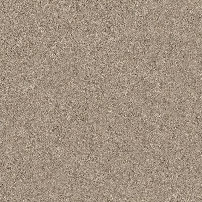 Shaw Floors Value Collections Fyc Ns II Net Dockside View (s) 722S_5E019