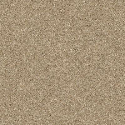 Shaw Floors SFA Fyc Ns II Net Honey Tea (s) 750S_5E019