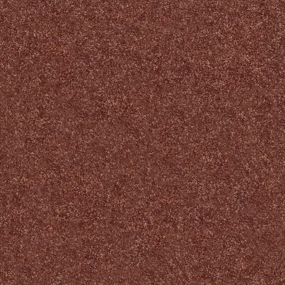 Shaw Floors SFA Fyc Ns II Net Serene Sunset (s) 804S_5E019