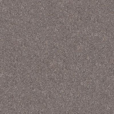 Shaw Floors SFA Fyc Ns II Net Lilac Field (s) 901S_5E019