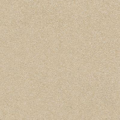 Shaw Floors SFA Fyc Ns Blue Net Sun Kissed (s) 110S_5E020