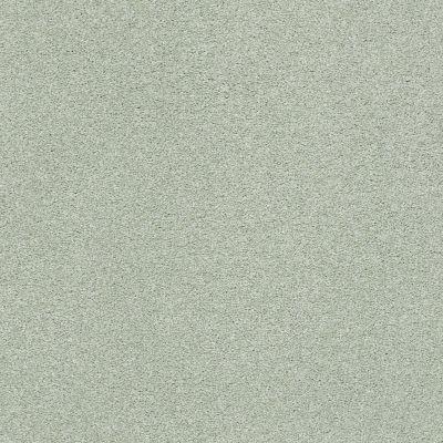 Shaw Floors SFA Fyc Ns Blue Net Willow Tree (s) 330S_5E020