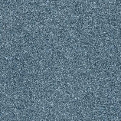 Shaw Floors SFA Fyc Ns Blue Net Lakeside Retreat (s) 413S_5E020