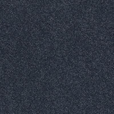 Shaw Floors SFA Fyc Ns Blue Net Star Gazing (s) 433S_5E020