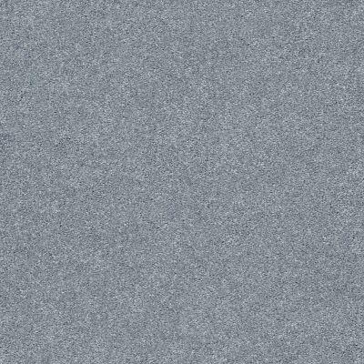 Shaw Floors SFA Fyc Ns Blue Net Dolphin Sighting (s) 510S_5E020