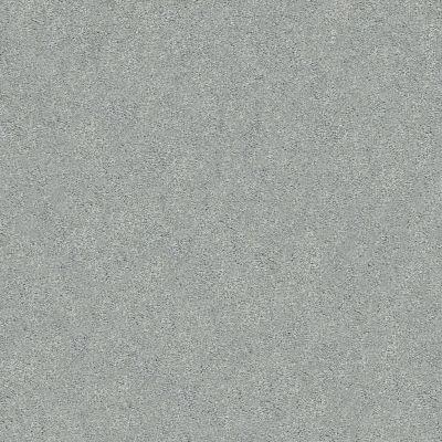Shaw Floors SFA Fyc Ns Blue Net Restful Day (s) 512S_5E020