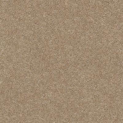 Shaw Floors SFA Fyc Ns Blue Net Falling Leaves (s) 720S_5E020
