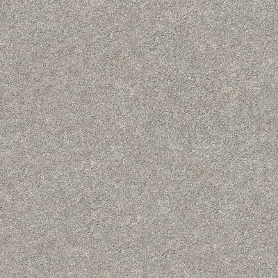 Shaw Floors SFA Fyc Ns Blue Net Back Patio (s) 724S_5E020