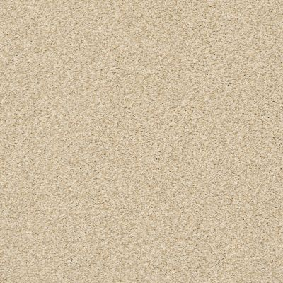 Shaw Floors SFA Fyc Tt I Net Sun Kissed (t) 110T_5E021