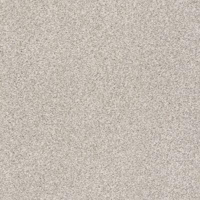 Shaw Floors SFA Fyc Tt I Net Chill In The Air (t) 126T_5E021