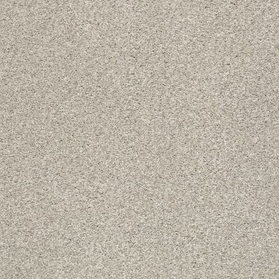 Shaw Floors SFA Fyc Tt I Net Shoreline Haze (t) 128T_5E021