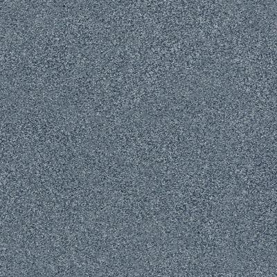 Shaw Floors SFA Fyc Tt I Net Lakeside Retreat (t) 413T_5E021