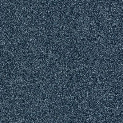 Shaw Floors SFA Fyc Tt I Net Twilight Golf (t) 434T_5E021