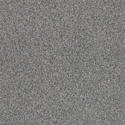 Shaw Floors SFA Fyc Tt I Net Lighthouse Shadows (t) 520T_5E021