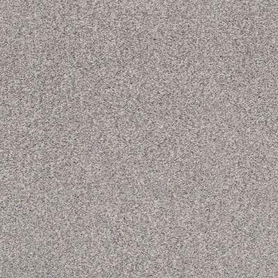 Shaw Floors SFA Fyc Tt I Net Whisper (t) 536T_5E021