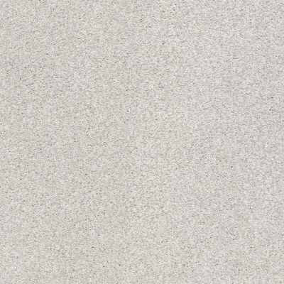 Shaw Floors SFA Fyc Tt I Net Morning Dew (t) 539T_5E021