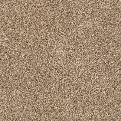 Shaw Floors SFA Fyc Tt I Net Falling Leaves (t) 720T_5E021