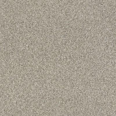 Shaw Floors SFA Fyc Tt I Net Back Patio (t) 724T_5E021