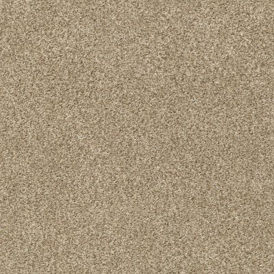 Shaw Floors SFA Fyc Tt I Net Honey Tea (t) 750T_5E021