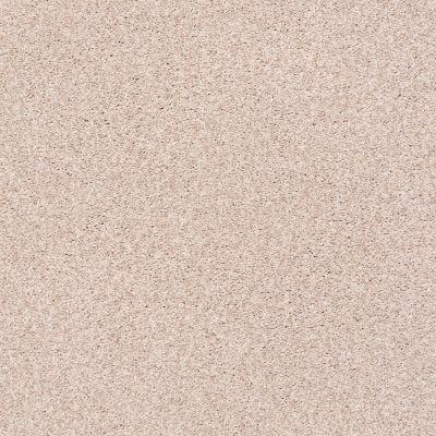 Shaw Floors SFA Fyc Tt I Net Soft Lullaby (t) 801T_5E021