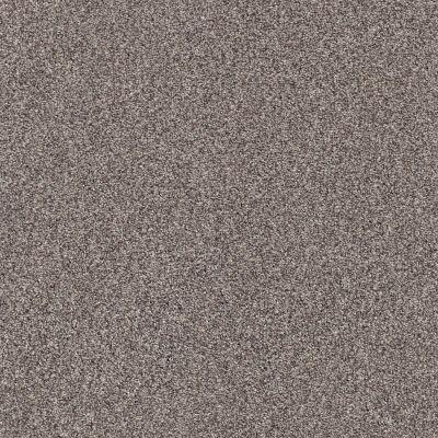 Shaw Floors SFA Fyc Tt I Net Lilac Field (t) 901T_5E021