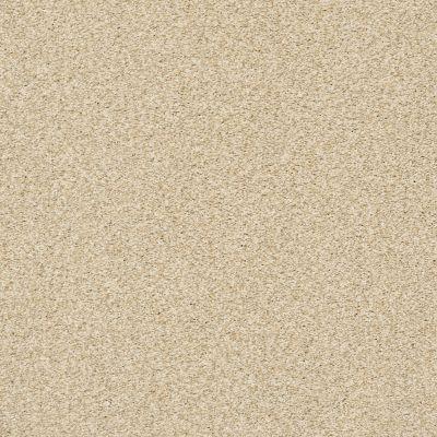 Shaw Floors SFA Fyc Tt II Net Sun Kissed (t) 110T_5E022