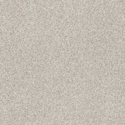 Shaw Floors SFA Fyc Tt II Net Chill In The Air (t) 126T_5E022