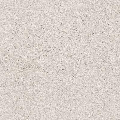 Shaw Floors SFA Fyc Tt II Net Whitewashed Frame (t) 154T_5E022