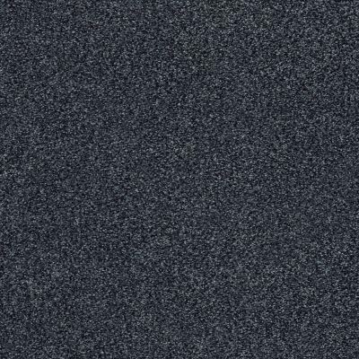 Shaw Floors SFA Fyc Tt II Net Hanging Vine (t) 309T_5E022