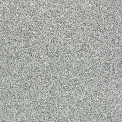 Shaw Floors SFA Fyc Tt II Net Water's Edge (t) 430T_5E022