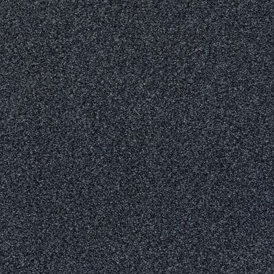 Shaw Floors SFA Fyc Tt II Net Star Gazing (t) 433T_5E022