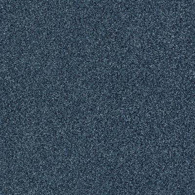 Shaw Floors SFA Fyc Tt II Net Twilight Golf (t) 434T_5E022