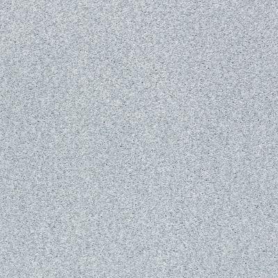 Shaw Floors SFA Fyc Tt II Net Winter Sky (t) 437T_5E022