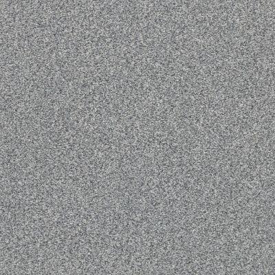 Shaw Floors SFA Fyc Tt II Net Dolphin Sighting (t) 510T_5E022