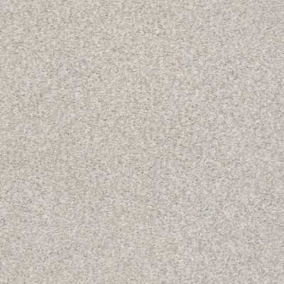 Shaw Floors SFA Fyc Tt II Net Quiet Time (t) 514T_5E022