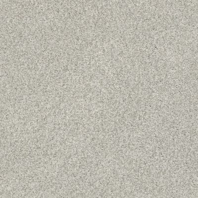 Shaw Floors SFA Fyc Tt II Net Refreshed (t) 515T_5E022